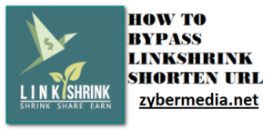 linkshrink bypass